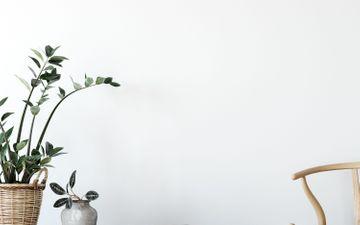 Relaxing White Wall