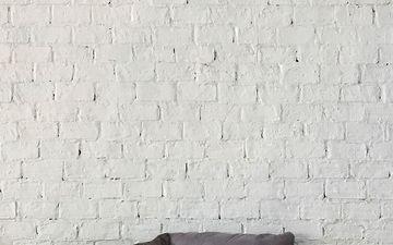 White Brick Wall (IG)