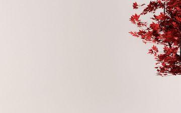Oriental (IG)