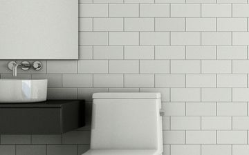 Toilet Against White Brick (IG)