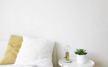 Cool Lamp & Plant
